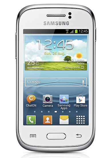 Samsung Galaxy Young 3