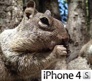 รูปตัวอย่างกล้องจาก iPhone 4S จาก Apple ว่าที่กล้องสมาร์ทโฟนที่ดีที่สุดในตอนนี้