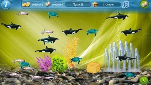 tap-fish-580-100