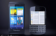 196Berry N series 5