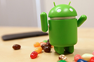 Google Android Jelly Bean 5.0 Phone 22