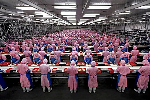 รายงานเผย มีแรงงานเด็กอายุ 15 ปีในจีนเสียชีวิต หลังโหมงานผลิต iPhone 5c หนัก 12 ชั่วโมงต่อวัน