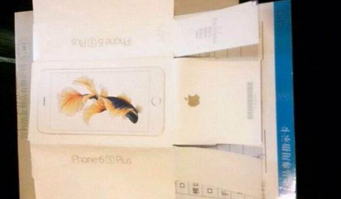 Apple-iPhone-6s-Plus-box-goldfish-wallpaper