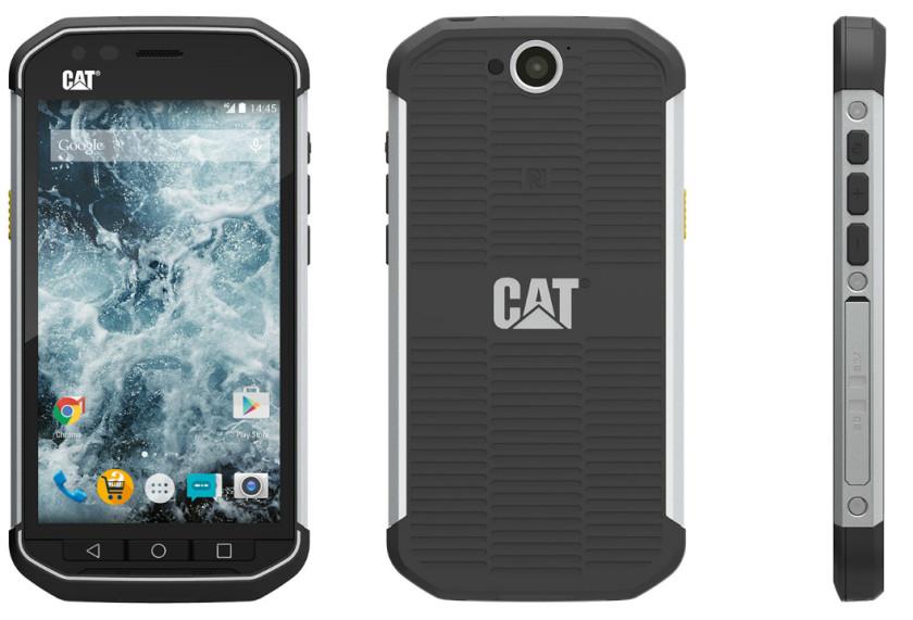 Cat-S40-AA-840x571