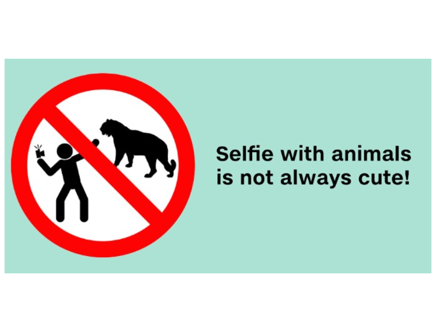 Russia warns its citizens about taking dangerous selfies 3
