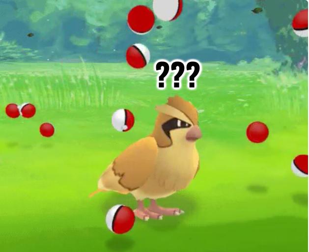 Pokemon GO พบ Bug ที่ทำให้โปเกมอนมีอัตราหลบหนีสูงมากเกินไป จนไม่สามารถจับได้ !!