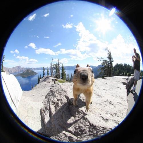 Polaroid-Smart-Lens-BananaStore-Promotion-000004