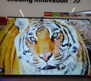 Big-C-Electronics-Solution-Fair-2017-SpecPhone-00078
