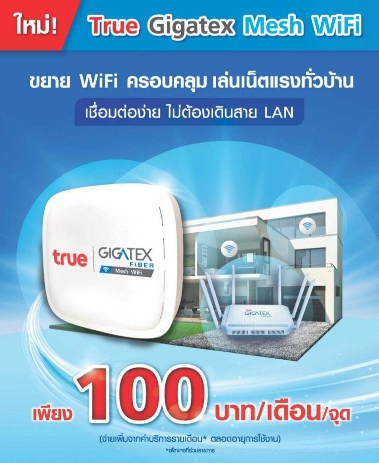 True Gigatex Mesh WiFi 0001