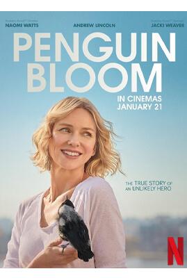 หนัง netflix ที่ดีที่สุด หนังดี netflix Penguin Bloom